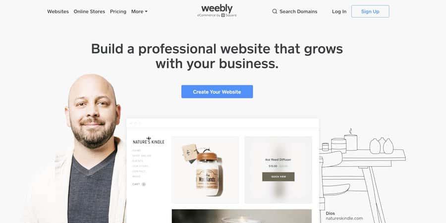 Creating a Paint Business Website