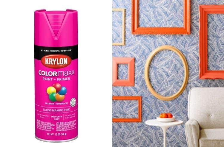 Krylon K05528007 Colormaxx Spray Paint
